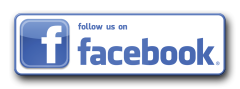 Facebook, follow us button